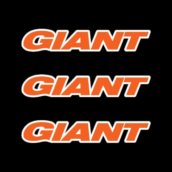 Giant mountain bike logo 02850