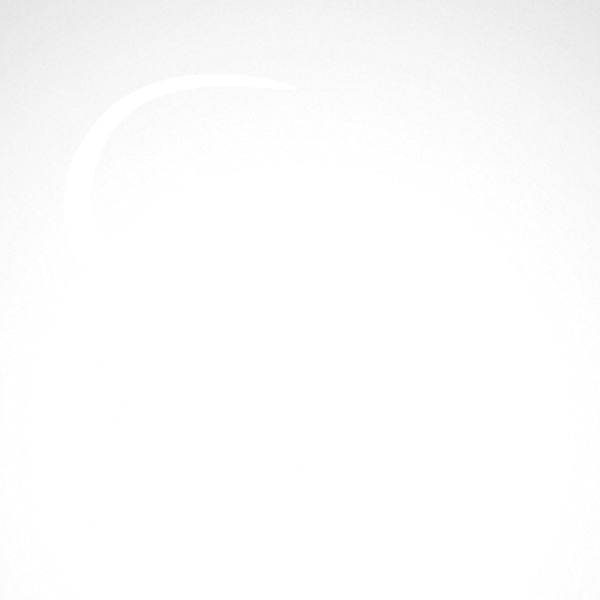Simple color vinyl Lizard Gecko | Stickers Factory
