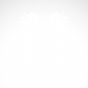 Pair Of Tribal Dragons 00501