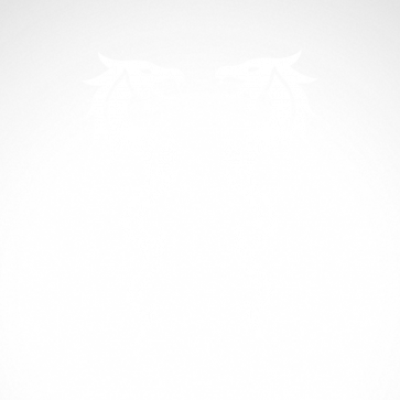 Pair Of Dragons 00502