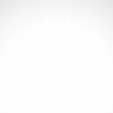 Dragon Head 00522