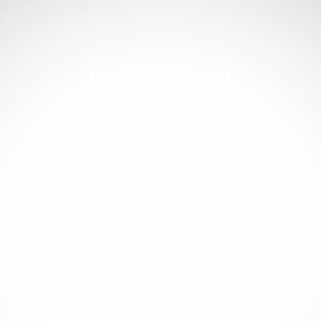 Pair Of Dragons 00533