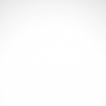 Dragon 00561