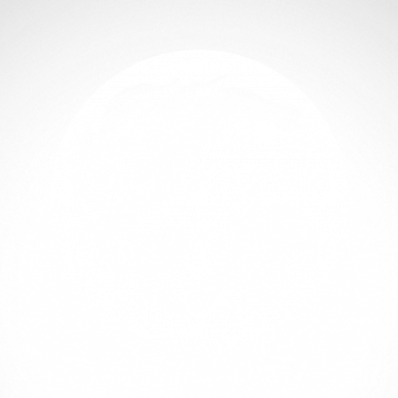 Dragon 00582