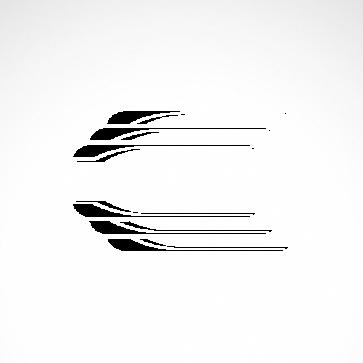 Pair Of Speed Graphics 01045