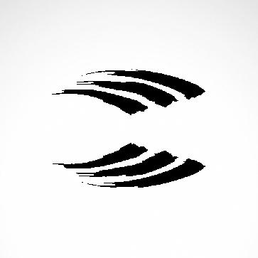 Brush Racing Design 01047
