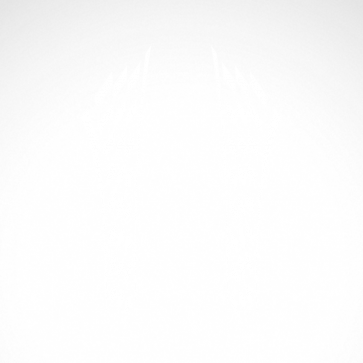 Flag Racing Design Chequered 01051