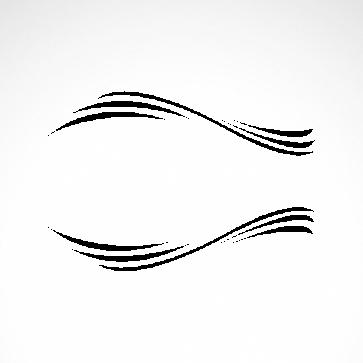 Tribal Racing Design 01066