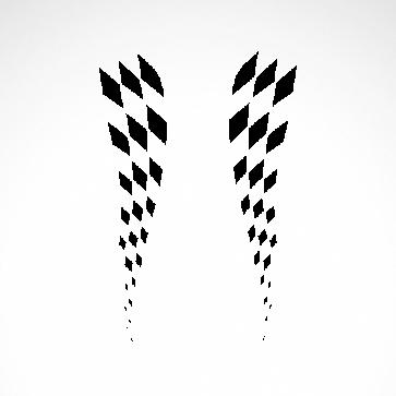 Flag Racing Design 01082