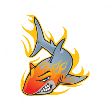Shark With Flames 01465