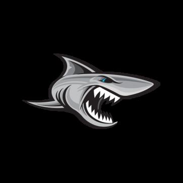 Shark Attack 01467