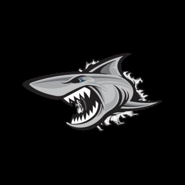 Shark Tearing 01476