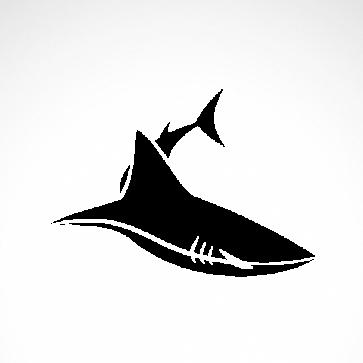 Shark Swimming 01705
