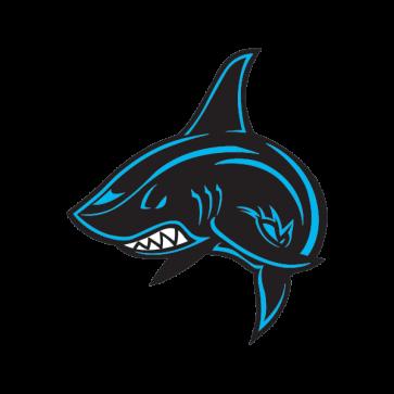 Colour Shark Angry 01760
