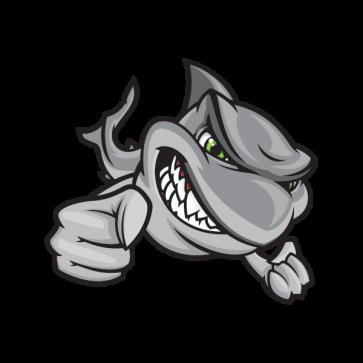 Hunting Shark 01761