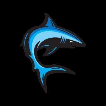 Cartoon Shark Swimming 01762