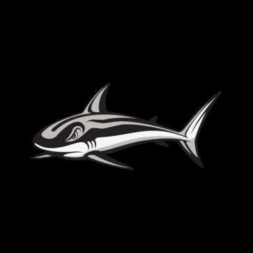 Shark Hunt 01790