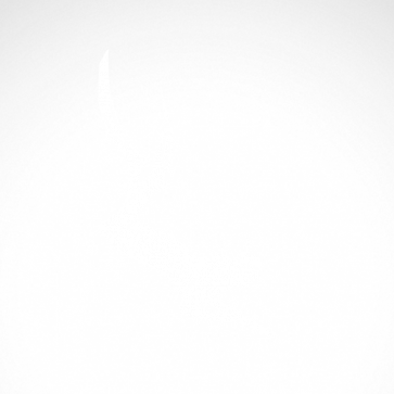 Spearfishing Diver 01843