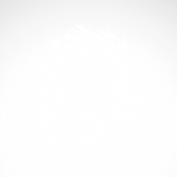 Lion Head 01903
