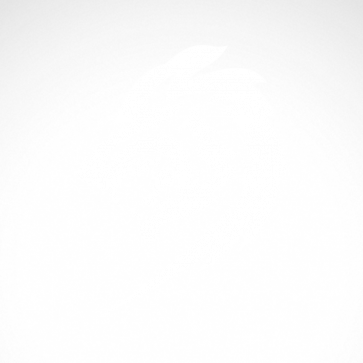 Panther Lion Head 01920