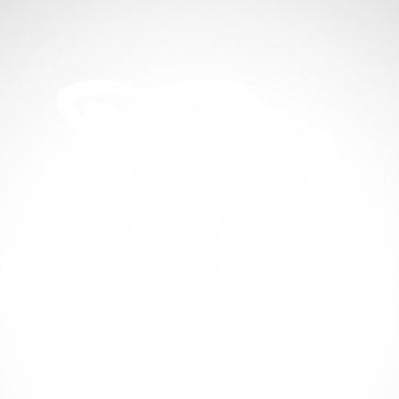 Panther Tiger Head 01928