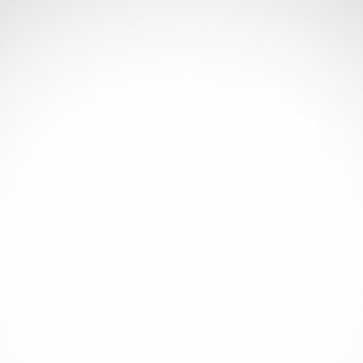 Lynx Wildcat 01929