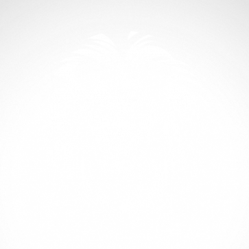 African Lion Head Engraved 01935