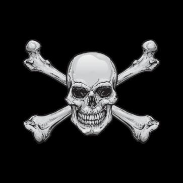 Original Crossbones Skull 02426