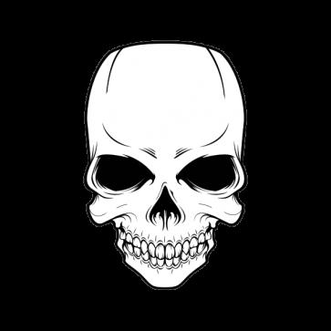 Skull High Detail 02436