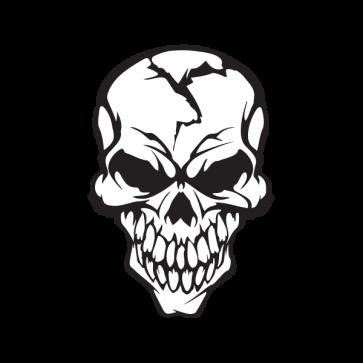 Cracked Skull Smile 02439