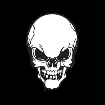 Cracked Skull Smile 02440