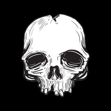 Old Skull High Detail 02452