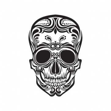 Ancient Skull 02456