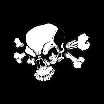 Crossbone Skull 02459
