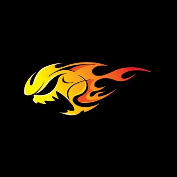 Skull Speed Flame 02466