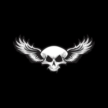 Skull Wings 02473
