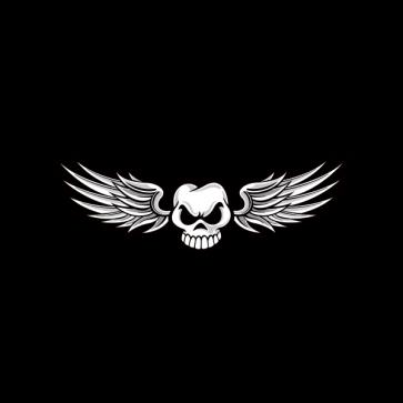 Skull Wings 02474