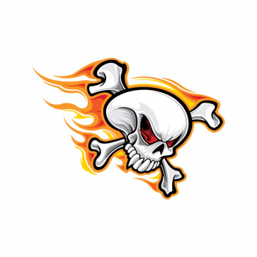 Skull With Flames 02483