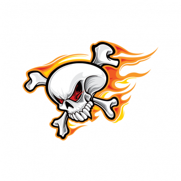 Skull With Flames 02484