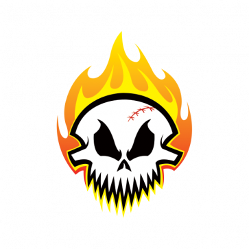Skull With Flames 02487
