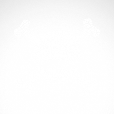 Mosaic Skull 02507
