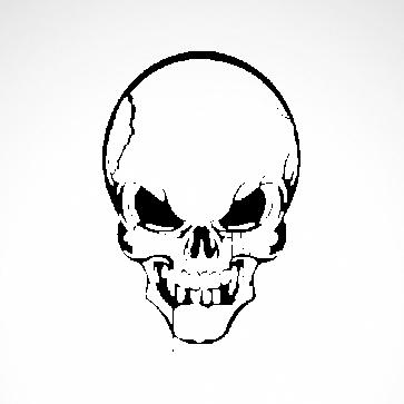 Skull 02521