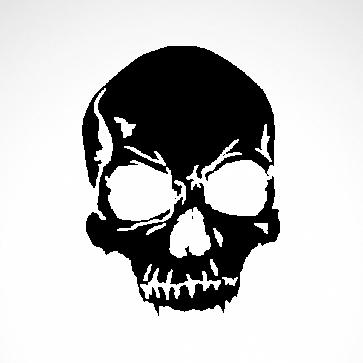 Cracked Skull 02523