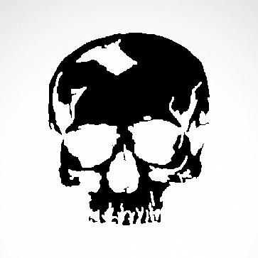 Crack Skull 02551
