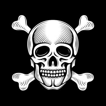 Skull 02568