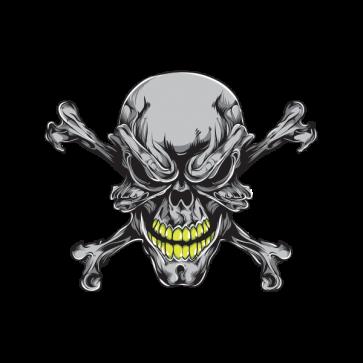 Alien Skull 02591