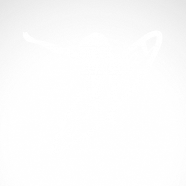 Surfer Figure 03301