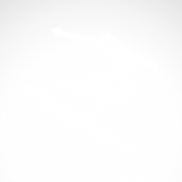 Surfer Figure 03305