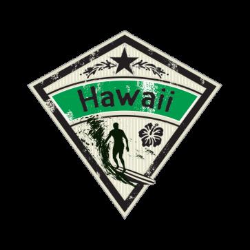 Hawaii Surfing 03345