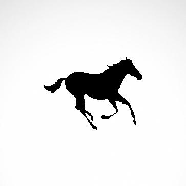 Horse 04302